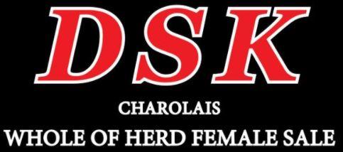 10 STRAWS SEMEN - DSK HJ EXPECT NO BETTER E38E (AI)(ET)(P)(R/F)
