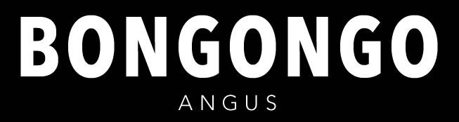 BONGONGO Q381 SV