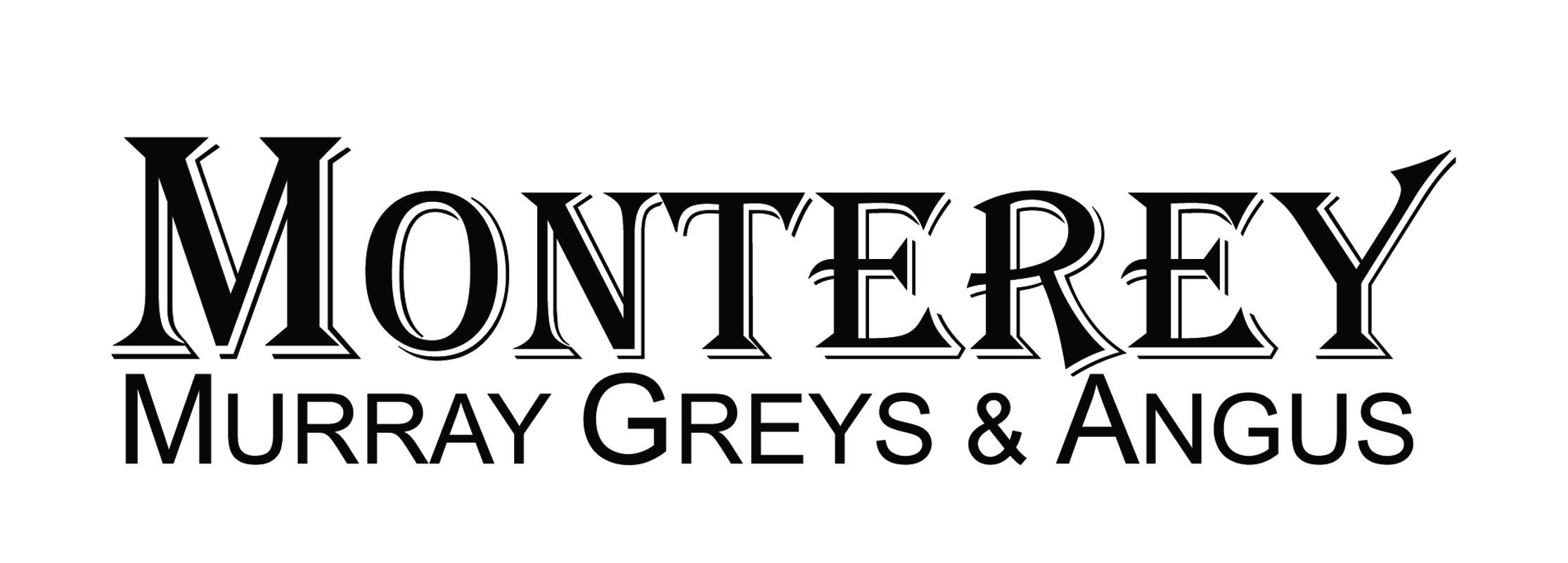 MONTEREY QANTAS Q219E - UNREGISTERED