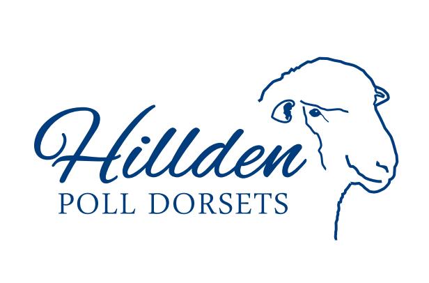 Hillden 654
