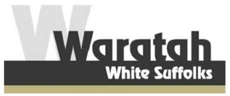 Waratah 200696