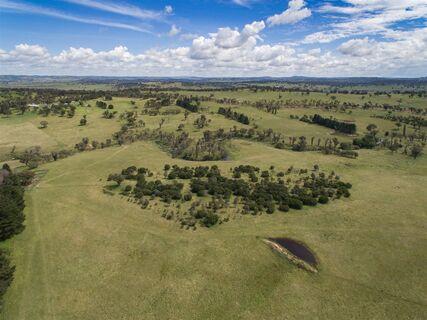 """Ponds Creek"" - 4650 Grafton Road, Wollomombi NSW"