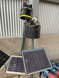 2x Assorted Ducklights & Solar Panels