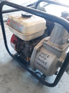 Hi flow portable pump
