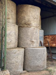 50 bales of clover hay