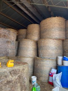 180 bales of oaten hay