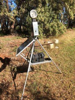 Solar Duck Light