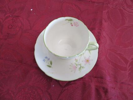 """Shelley """"Wild Anemone"""" cup and saucer"""
