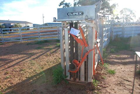 Clipex cattle crush