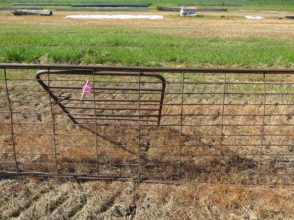 MESH GATES