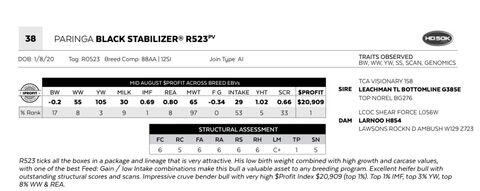 PARINGA BLACK STABILIZER R523