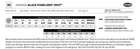 PARINGA BLACK STABILIZER R513