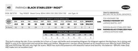 PARINGA BLACK STABILIZER R620