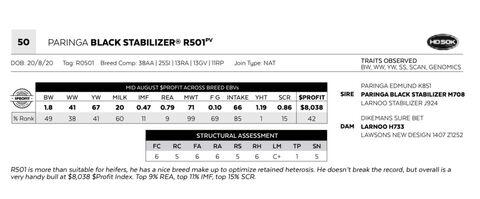 PARINGA BLACK STABILIZER R501