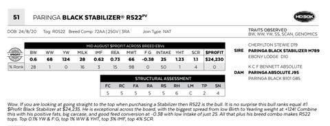 PARINGA BLACK STABILIZER R522