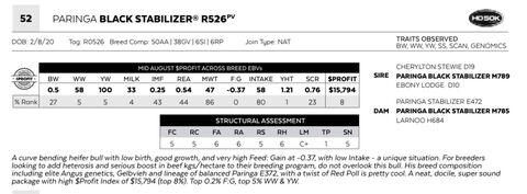 PARINGA BLACK STABILIZER R526