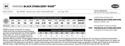 PARINGA BLACK STABILIZER R528