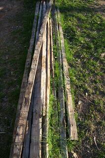 Adzed timber lengths