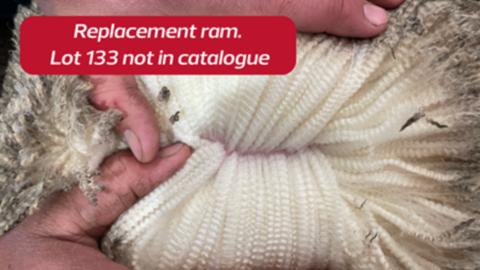 202150 - Replacement Ram