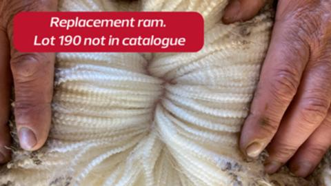200111 - Replacement Ram