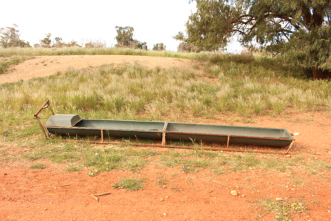 Water trough with float