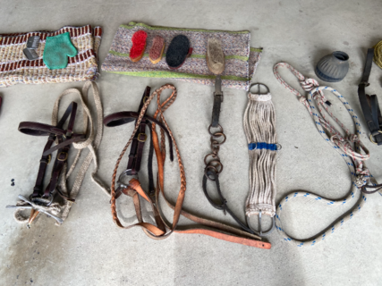 ASSORTED HORSE RIDING GEAR