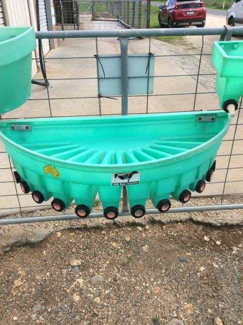 12 Teat Fence Hung Gravity Divisional Feeder