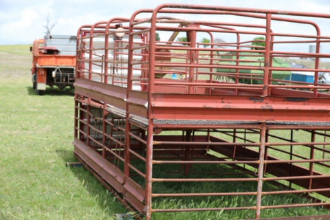 steel stock crate