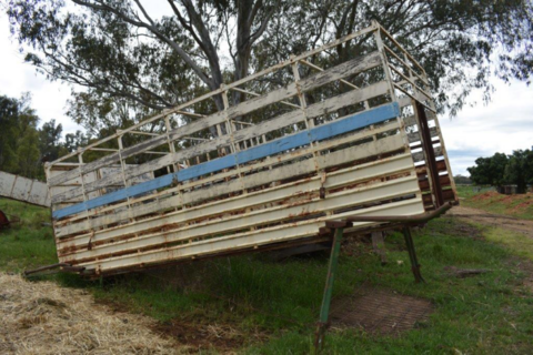 Cattle crate