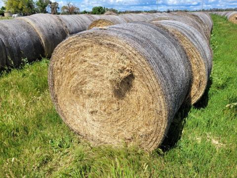 Certified Organic Pasture Hay 48 Rolls (B)