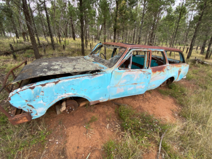 Holden car # 3