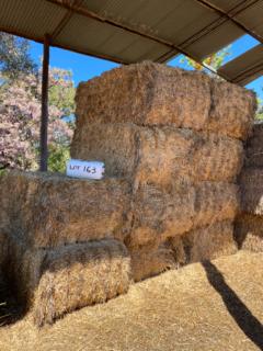 Hay - large square