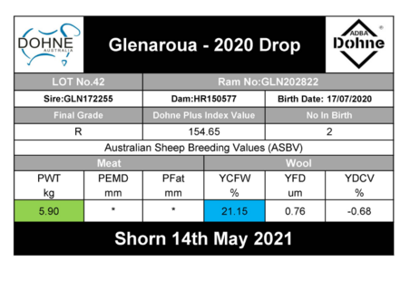 GLN202822